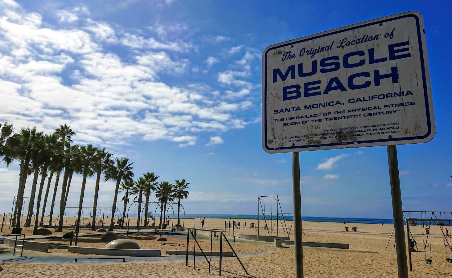 muscle-beach-new-wayfarer-michał-fic