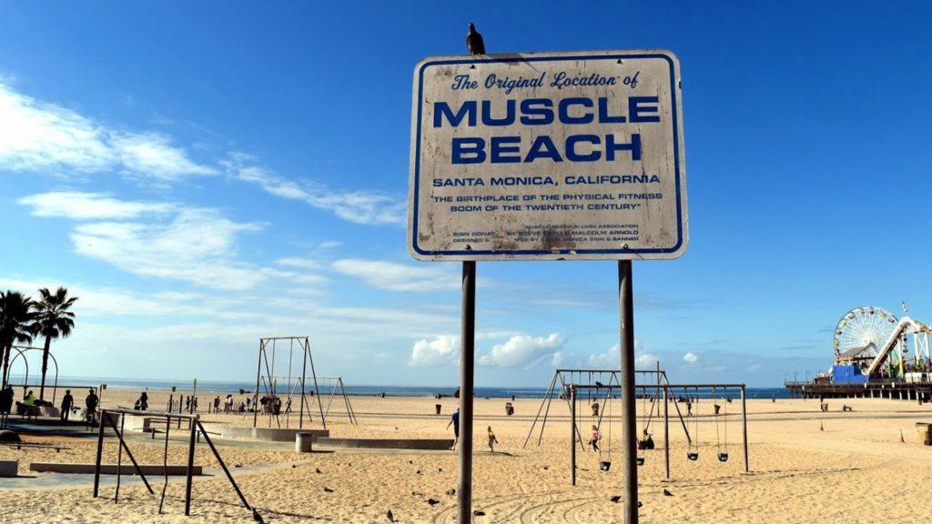 Znak informujący o plaży dla sportowców